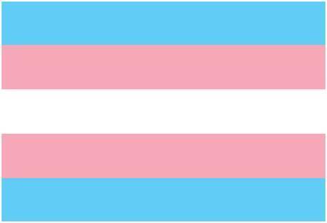 transgender-pride-flag_a-G-15133085-0