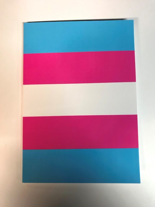 image shows a notebook with cover in trans flag colours